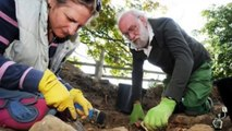 Hand in hand for 700 years:Skeletons holding hands found by archaeologists in Leicestershire