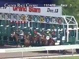 CALDER RACE COURSE, 2008-11-14, Race 1
