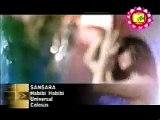 Habibi Habibi By SANSARA