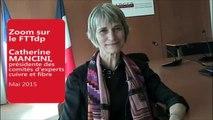 Interview de Catherine Mancini, présidente du comité d'experts cuivre (20 mai 2015)