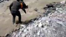 Chien sauvé de la noyade par un policier très courageux qui saute à l'eau