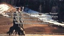 Tierschutz im Nationalsozialismus - Das Reichstierschutzgesetz - Die Wahre Geschichte