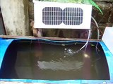 Solar Powered Outdoor Fish Tank Water Pump - (Tilapia in a Drum - Solar Powered Aquaponics)