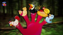 Birds Finger Family Song - Nursery Rhymes For KidsChildrens - Rhymes Videos - Angry Birds Rhymes