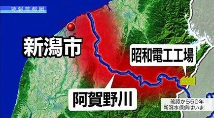 特報首都圏「誰にも言えない 語れない~新潟水俣病 50年目の被害者たち~」20150522