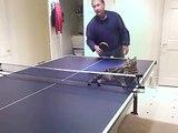 Ping Pong Cat !