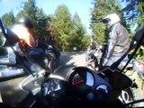 Yamaha FZ1 on twisty roads