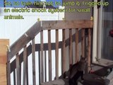 Cat Jump Fail- Cat Gets Shocked by Electric Wired Handrail / Fence