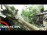 'Henry' to bring rains over Eastern Visayas, Bicol