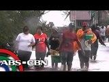 Trees fall, roads are blocked as Glenda hits Bataan
