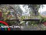 QC residents, worry in strong winds than rain storm
