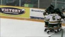 Clarkson 3 - RPI 2 OT - Women's Hockey ECAC Quarterfinal - Game 1, Mar. 1, 2013