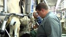 Rob West, Michigan Farm Bureau 2012 Outstanding Young Farm Employee Award Winner