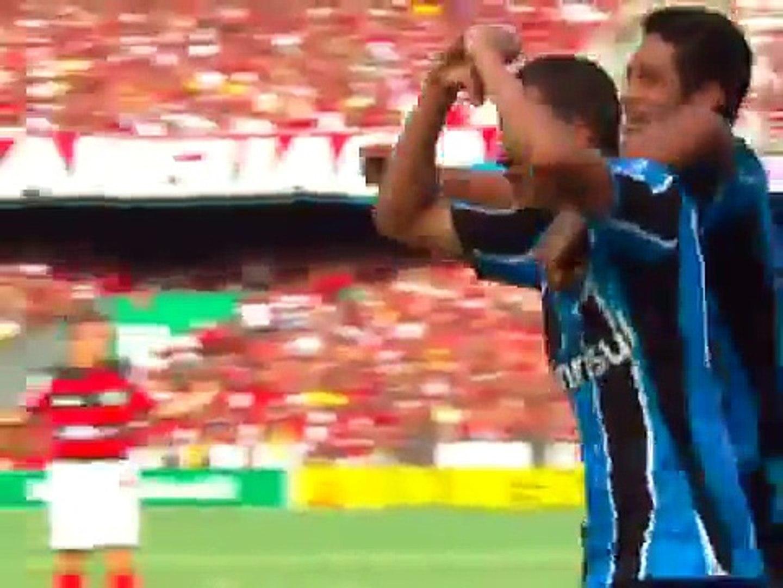 Flamengo 2 x 1 Gremio Campeão Brasileiro 2009