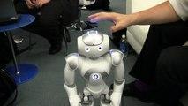 Nao Robot Demonstration - Movements, Dance, Object Tracking