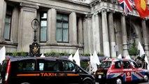 The Peace Walk, 2012   THE PEACE FLAG