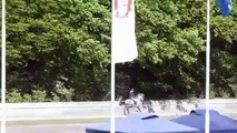 2011-05-13 FIZO Osterbyholz Bragi frá Austurkoti-Desktop.m4v