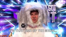 Can David Walliams beat a dog in an agility test- - Audition Week 1 - Britain's Got Talent 2015