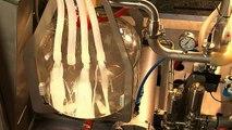 Lely Süt Robotu: İnsansız Süt Sağım Teknolojisi