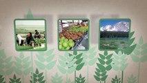 Mettre en valeur le role des engrais dans l'agriculture mondiale