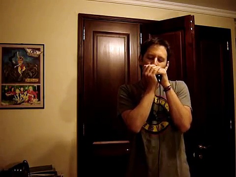 Sweet Child O' Mine by Francisco Celedón, harmonica (Tabs of Intro in infomation)