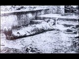 So-Called Armenian Genocide ( Tall Armenian Tale ) - 1915