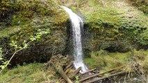 Silver Falls Waterfall Montage from Trail of Ten Falls Loop Hike - Oregon Waterfalls