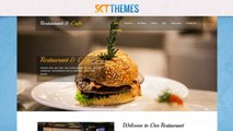 Amazing Look Professional Premium Wordpress Themes