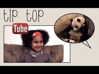 Animaux & Bébé sur Youtube - Tip Top Tube #2