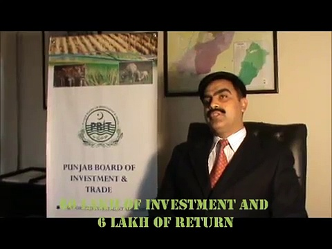 Invest in livestock dairy in Punjab