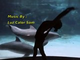 Girl makes Dolphin have fun with Beautiful Movements - Intrumental Music Relax ( Motivational Love )