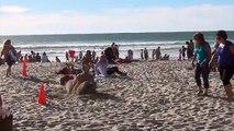 Plajda yapılan korkunç şaka