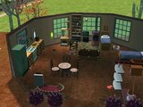 Sims 2 - Koťátko je na světě! / Sasany