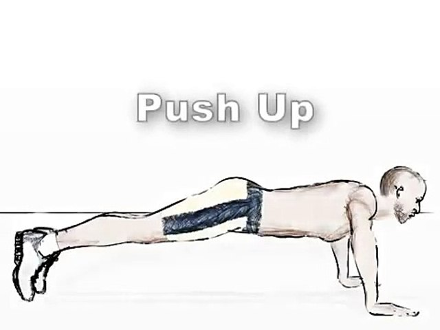 exercises Bodybuilding - Push Up for gain chest _ pectoral muscle workout