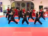Australian Martial Arts Extreme Performance Team- Australias Got Talent 2009