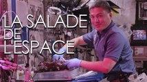 À bord de l'ISS, on déguste des salades extraterrestres
