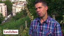 Paris : le vignoble caché de la butte Bergeyre prépare les vendanges
