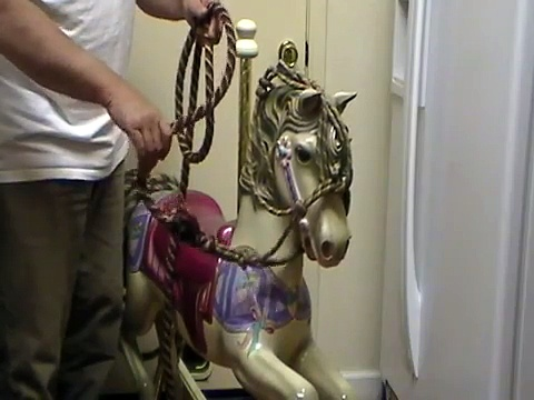 Importance of Riding A Horse with One Rein- Rope Halter Riding- Rick Gore Horsemanship