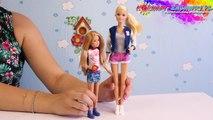 Barbie & Stacie  Doll (2-Pack) / Barbie i Stacie - Barbie Siostry / Barbie Sisters - CGF34 CGF35