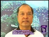 interview Dr Somchai Bussarawit, the Chief of Museum and Aquarium at Phuket Marine Biological Center