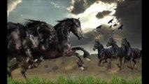 Novalis (Novalis Deux)-Wild Horses