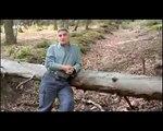 Mit offenen Karten - Wald 3 - Wald und Klima - Juni 2010