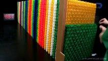 60.000 Domino taşı ile muhteşem bir gösteri