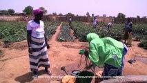 Burkina Faso le réchauffement climatique qui épuise les sols : jardin de santé