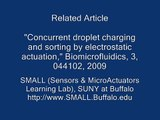 Lab on a chip (LOC): Electrostatically Addressable Droplet-based Microfluidics SMALL@SUNY-Buffalo