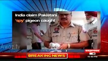Ahmed Qureshi Classic Chitrol Of Indians On Saying 'We Caught Pakistani Spy Pigeon'