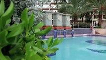 San Juan Marriott Resort & Stellaris Casino Video Tour