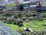 Hortas Urbanas - Vale de Chelas - Lisboa