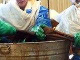 Etats-Unis: faut-il nettoyer les oiseaux de la marée noire?