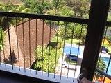 Review of Hotel Santika in Nusa Dua, Bali